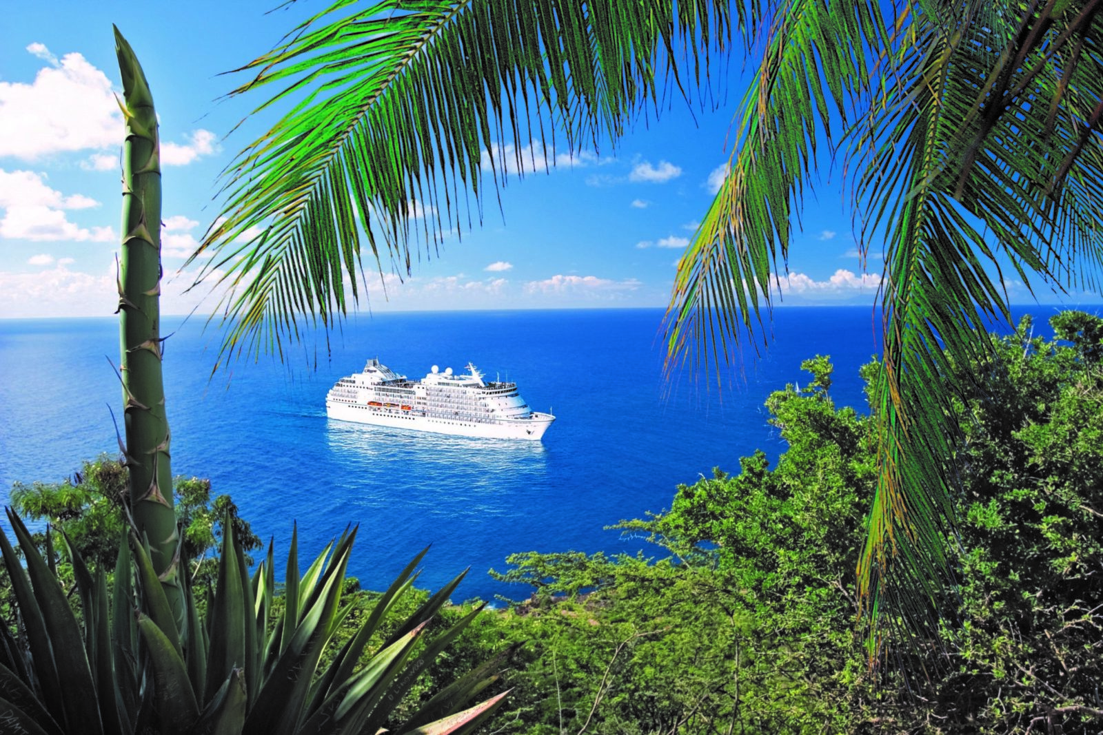 Seven Seas Navigator in the Caribbean