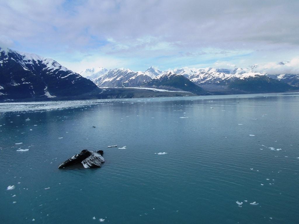 Alaska cruise cancellations