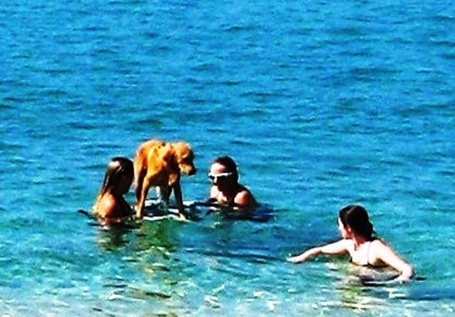 Missing Maui beaches