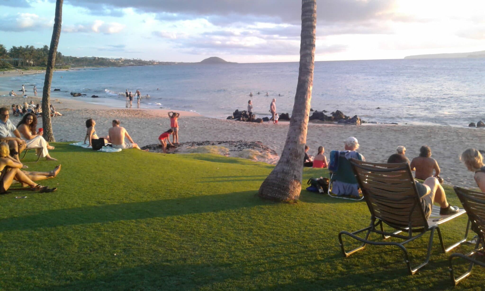 Maui protests