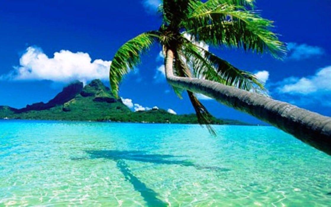 Hawaiian resuming flights to Tahiti