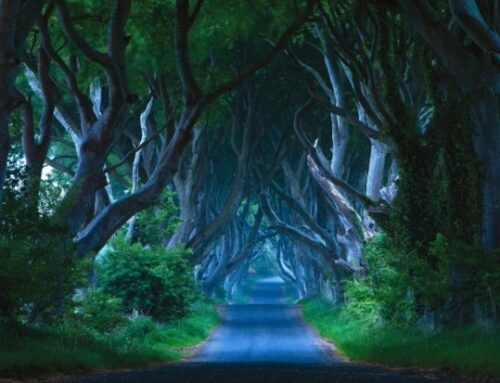 """The Haunted houses, ghosts and ghouls of Ireland """"Halloween haven"""""""